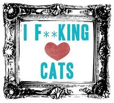 I f**king <3 cats