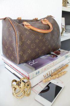 Louis Vuitton Handbag Speedy