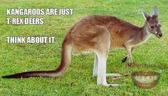 Hahaha, OMG look at this Think