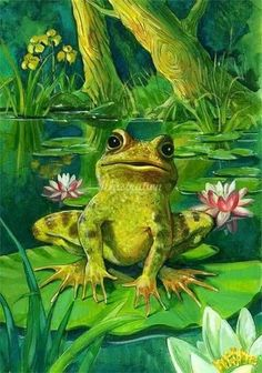 Frog by Ruth Palmer Funny Frogs, Cute Frogs, Frosch Illustration, Illustration Art, Hermit The Frog, Frog Drawing, Frog Pictures, Frog Tattoos, Frog Art