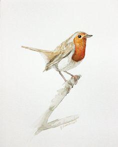 Robin Watercolor Print 8in x 10in Bird Art by ArtbyHeatherRose