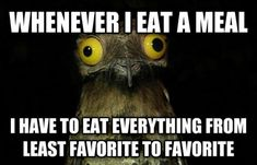 See more 'Weird Stuff I Do Potoo' images on Know Your Meme! Funny Pictures Can't Stop Laughing, Best Funny Pictures, Doterra, Potoo Bird, Funny Quotes, Funny Memes, Humor Quotes, Dump A Day, Lol So True