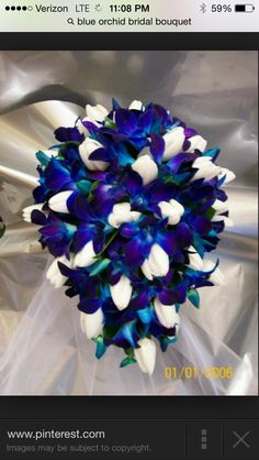 Cobalt blue and white rose flowers