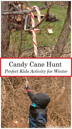 Looking for fun Christmas in July activities? Have a candy cane hunt! Candy cane activities are a fun way to celebrate the season. Having a candy cane hunt is a fun kids Christmas activity for all ages. It's the perfect Christmas scavenger hunt.