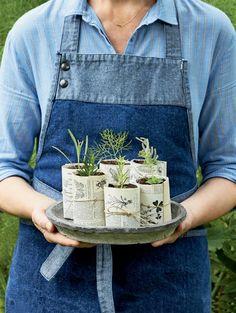 DIY jardin: On rempote les petites plantes!