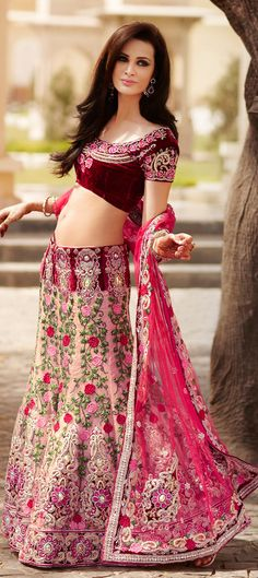 Another machine embroidered lehnga