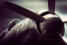 The Fury by Testchamber -- Hawker Sea Fury T20