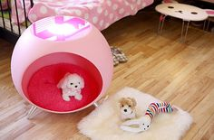 dog bed and table in one? it would save so much room. love it!