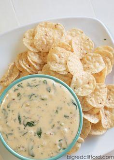the best queso blanco dip recipe   Color Me Meg