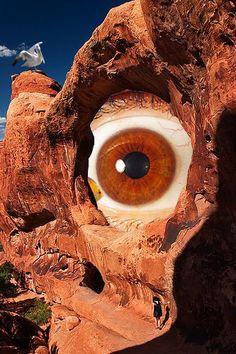 Olho de peixe - Ana Ligeiro