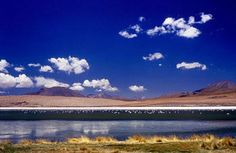 Bolivian landscape, Laguna Colorada where flamingoes come to feed, on the southern Bolivian altiplano.