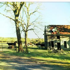 Old farm in AR