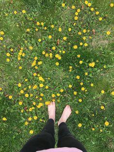 #spring #grass #dandelion #feet