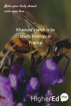 Khaoula has shared her wish to #studyabroad #biology in #France with her friends Like if you want to study biology too :) #studentsofHigherEdMe Make your study abroad wish too!