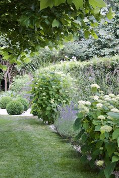 Good No Cost cottage herb garden Style Herbal treatments can easily be developed indoors as long as you ensure that you get rolling off of the proper… – Tepe Time Herb Garden Design, Modern Garden Design, Contemporary Garden, Garden Care, Farm Gardens, Outdoor Gardens, Hydrangea Garden, Design Jardin, Backyard Lighting