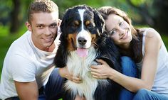 La aseguradora considera oportuno promover la contratación de un seguro para estos seres en el Día Mundial de la Mascota.