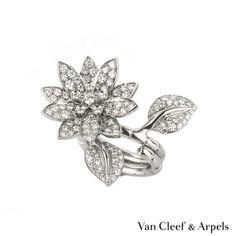 Van Cleef & Arpels Diamond Gold Lotus Ring For Sale Van Cleef Arpels, Van Cleef And Arpels Jewelry, Lotus Ring, Diamond Rings For Sale, Diamond Jewelry, Lotus Jewelry, White Gold Jewelry, White Gold Rings, Jewellery Uk