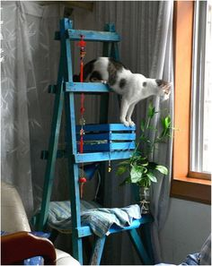 Top 10 Entertaining DIY Cat Trees - Top Inspired I want to make one when I move into my apartment, so excited about adopting a cat.