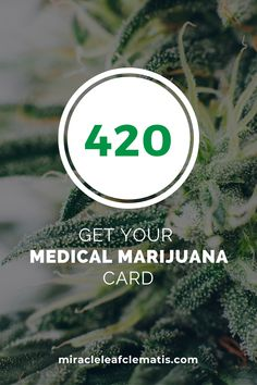 Medical Marijuana Card available at Miracle Leaf in downtown West Palm Beach, FL. for patients who qualify for #marijuana treatment as an alternative to prescription drugs or opioids. Schedule a meeting with a Miracle Leaf marijuana doctor this week! Miracle Leaf 513 Clematis St Ste 101, West Palm Beach, FL 33401 #MiracleLeafNearMe #MiracleLeafWestPalmBeach #MarijuanaCard #FloridaMedicalMarijuana Perfect Image, Perfect Photo, Love Photos, Cool Pictures, Downtown West Palm Beach, Clematis Street, Palm Beach County, State Of Florida, Medical History