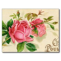 >>>Best          	Vintage French Publicity Girly Red  Roses Post Cards           	Vintage French Publicity Girly Red  Roses Post Cards in each seller & make purchase online for cheap. Choose the best price and best promotion as you thing Secure Checkout you can trust Buy bestThis Deals         ...Cleck link More >>> http://www.zazzle.com/vintage_french_publicity_girly_red_roses_postcard-239358490120713944?rf=238627982471231924&zbar=1&tc=terrest