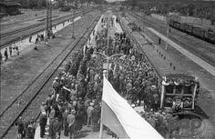 Otwock, 1946-07-12. Uroczystość uruchomienia pociągów elektrycznych łączących Warszawę z Otwockiem. Zdjęcia robione z dachu wiaty dworca. (PAP)