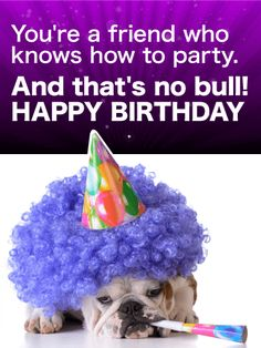 Send Free Party Bulldog Funny Birthday Card for Friends to Loved Ones on Birthday & Greeting Cards by Davia. It's free, and you also can use your own customized birthday calendar and birthday reminders. Happy Birthday Wishes Cards, Birthday Cards For Friends, Happy Birthday Funny, Happy Birthday Quotes, Birthday Stuff, Funny Birthday Cards, Birthday Greeting Cards, Friend Birthday, Birthday Greetings