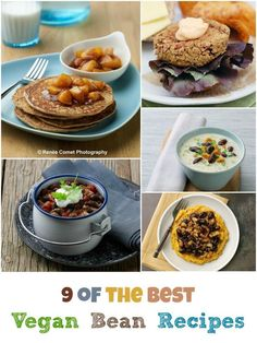 9 of the Best Vegan Bean Recipes: includes veggie burger, pancakes and much more!