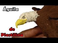 Como hacer un aguila de plastilina / how to make an eagle with plasticine - YouTube