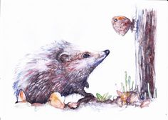 NEW Print  of Original Watercolour Painting by Be Coventry,Realism,Hedgehog