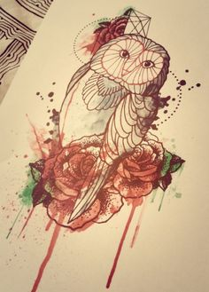 Owl and red roses with watercolor...!!!