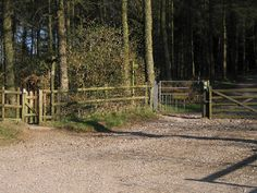 Macc Forest Walks