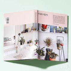 식물일기 | 엘르코리아(ELLE KOREA)