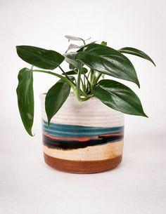 Blue Eagle Ceramic Planter - Pistils Nursery