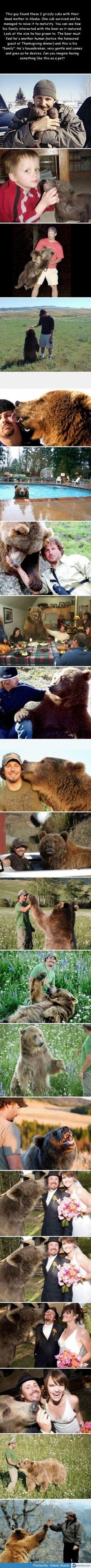 Really cute bear story