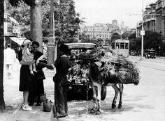 Botijos y búcaros finos - 1945 - Manuel Urech Foto del catálogo Madrid al paso.