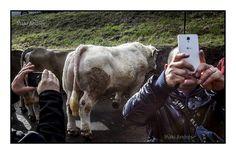 Iñaki Andrés: Let´s take a selfie.