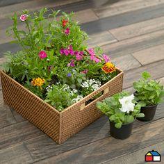 Flores para tu #Jardin #Terraza Rattan, Wicker, Garden Planters, Exterior, Diy Crafts, Garden Ideas, Guy, Gardening, Style