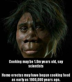 Human Evolution, No Cook Meals, Thing 1, Sayings, Movies, Movie Posters, Dinner, Breakfast, Dining