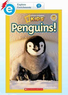 Little Minds at Work: Penguin Close Read {a freebie}