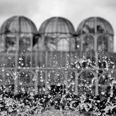Jardim Botânico de Curitiba, Brasil © Alexinward #luxosqueoimpériotece #brasil #curitiba #natureza #jardim #jardimbotanico #império #imperivm #imperivmriodejaneiro | Botanical Garden in Curitiba, Brazil © Alexinward #luxuriesthattheempireweaves #brazil #curitiba #nature #garden #botanicalgarden  #empire #imperivm #imperivmriodejaneiro