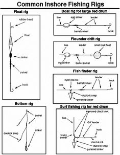 Freshwater fishing can be a great experience. Find out more about freshwater fishing including useful tips and how to stay safe when you are on the water. Saltwater Fishing Gear, Trout Fishing Tips, Fishing Rigs, Surf Fishing, Fishing Knots, Gone Fishing, Best Fishing, Fishing Stuff, Fishing Tips