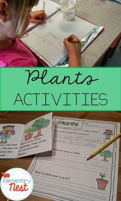 Educational activities for science, focusing on plants. This blog post shows how we learned about plants with a hands-on science experiment and activities such as reading that taught us about plants.