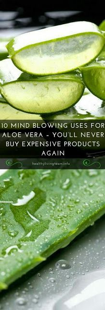 In Case You Missed: WITH ALOE VERA YOU'LL NEVER BUY EXPENSIVE PRODUCTS...