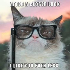 I have to agree with Grumpy Cat at least when it comes to certain people that is :)