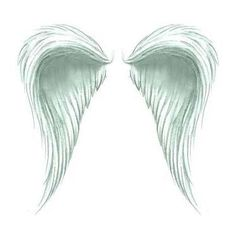 Fluffy Angel Wings Tattoo Design - TattooWoo.com