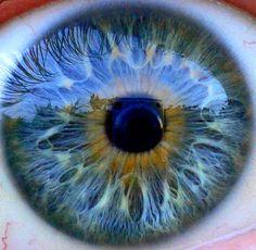 Amazing Macro Eye Photography | Design Inspiration | PSD Collector