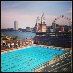 North #Sydney Olympic Pool - The best public pool in Sydney. Photo by Kate Branch from http://www.katebranch.com/