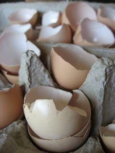 Using egg shells in the garden