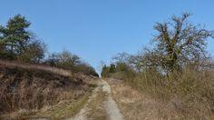 Weg oberhalb des Welzbachtals entlang