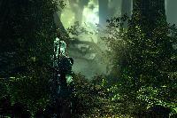 The Witcher 2: Assassins of Kings - Screenshots